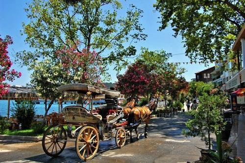 Image result for جزر الأميرات اسطنبول