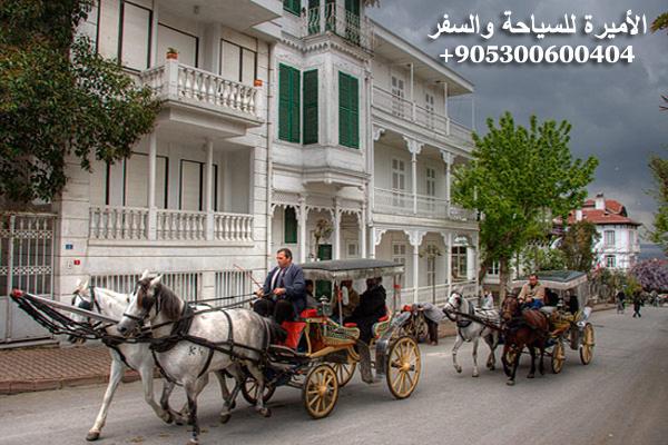 برنامج سياحي في اسطنبول وطرابزون